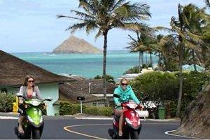 Waikiki Scooter Rentals;