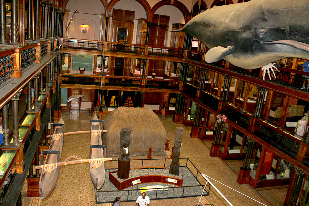 Bishop Museum Main Room