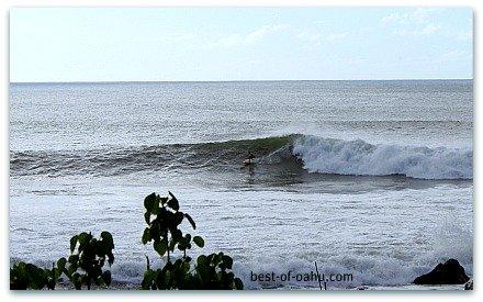 Hawaiian Surfing Waimea Bay