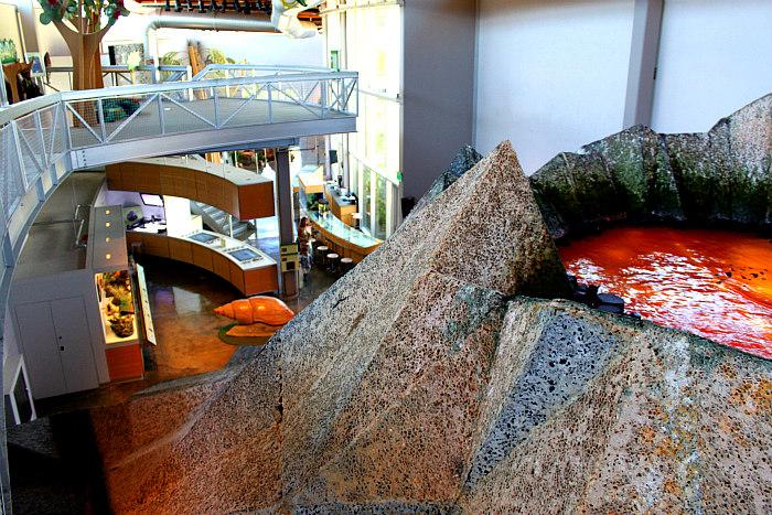 Bishop Museum Adventure Center