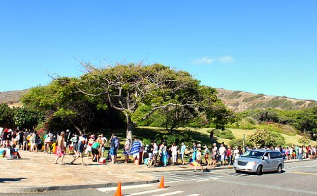 Hanauma Bay Crowds