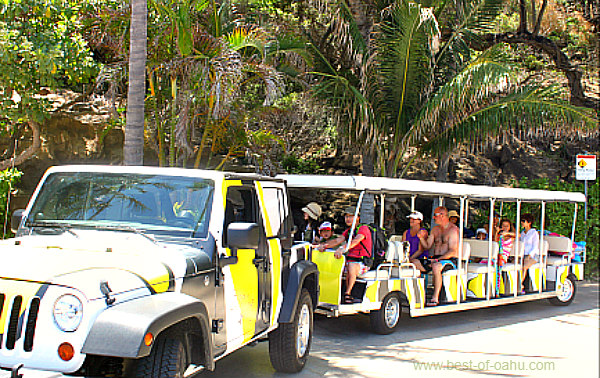 Hanauma Bay Beach Shuttle