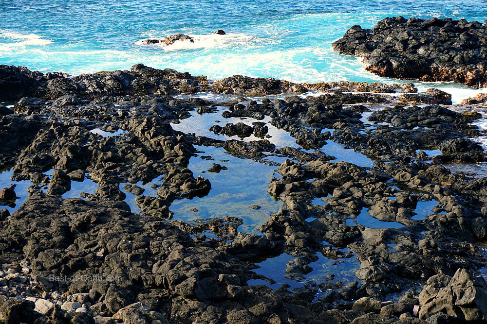 Kaena Point Tide Pools