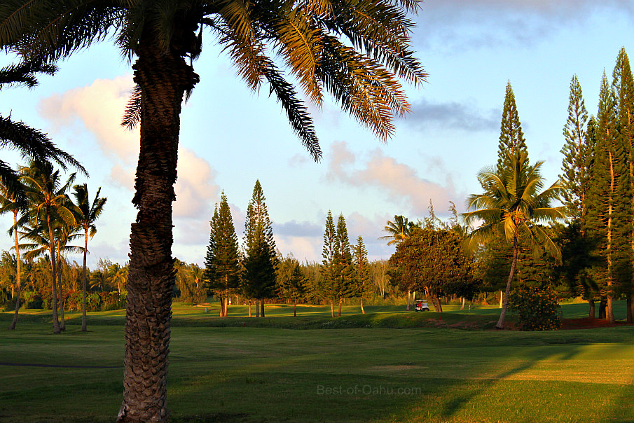 Turtle Bay Golf Course