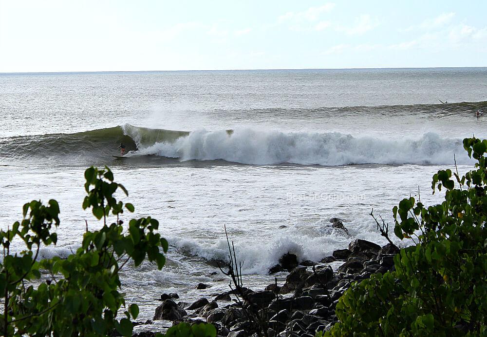 Waimea Bay Big Waves