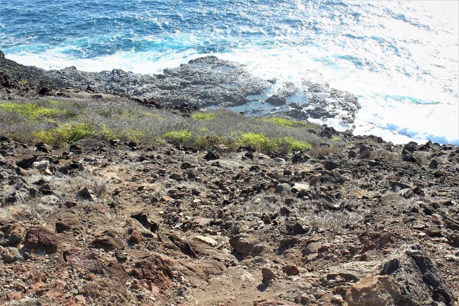 Kaiwi Scenic Shoreline