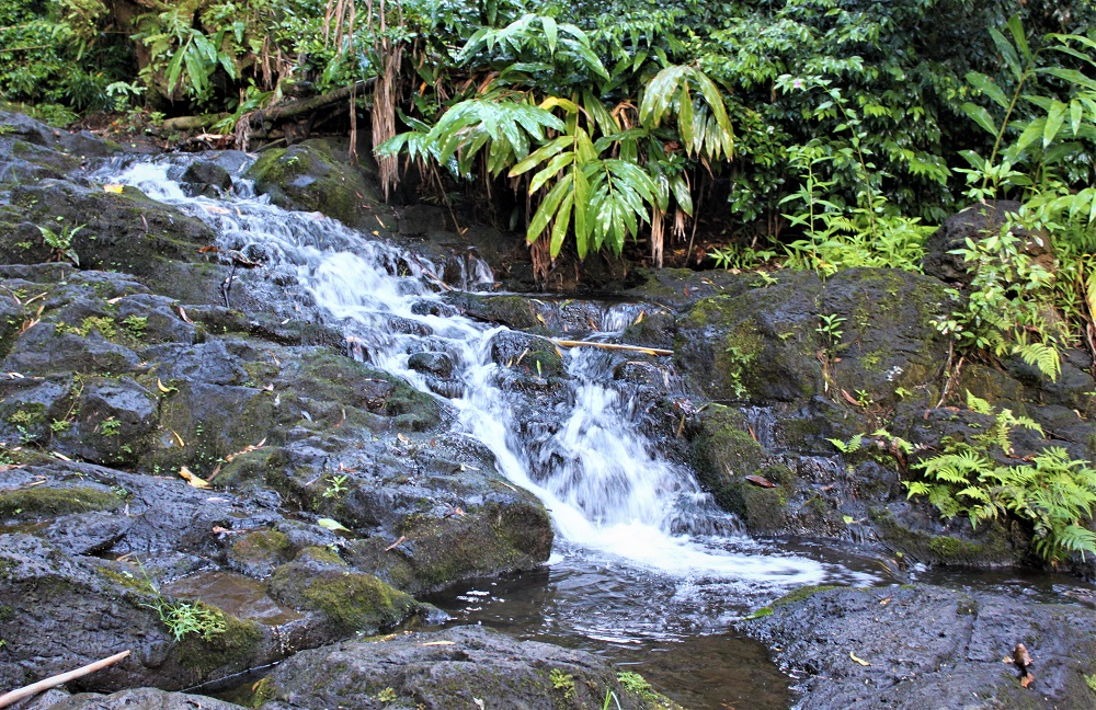 Kaniakapupu Ruins Stream