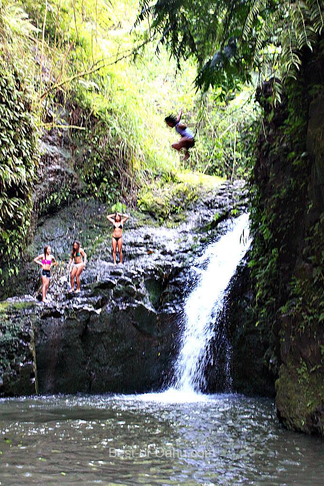 Maunawili Falls Jumper