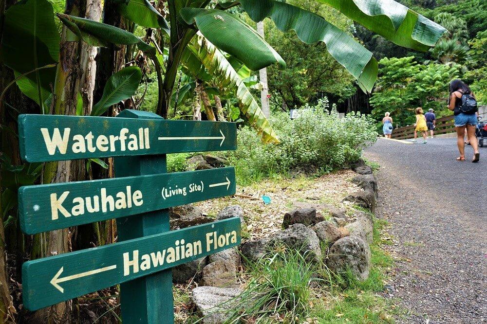 Waimea Falls Trail