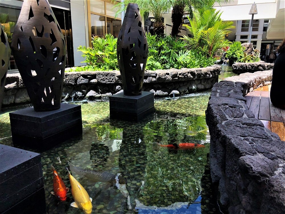 Ala Moana Center Koi Pond