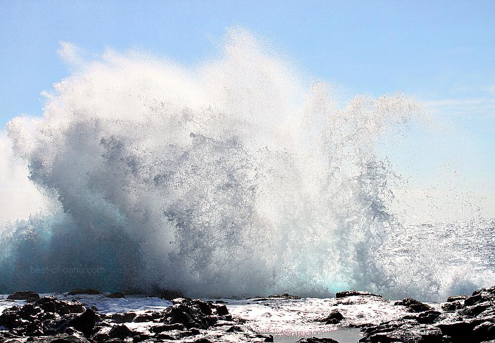 Makapuu Tidepool Wave