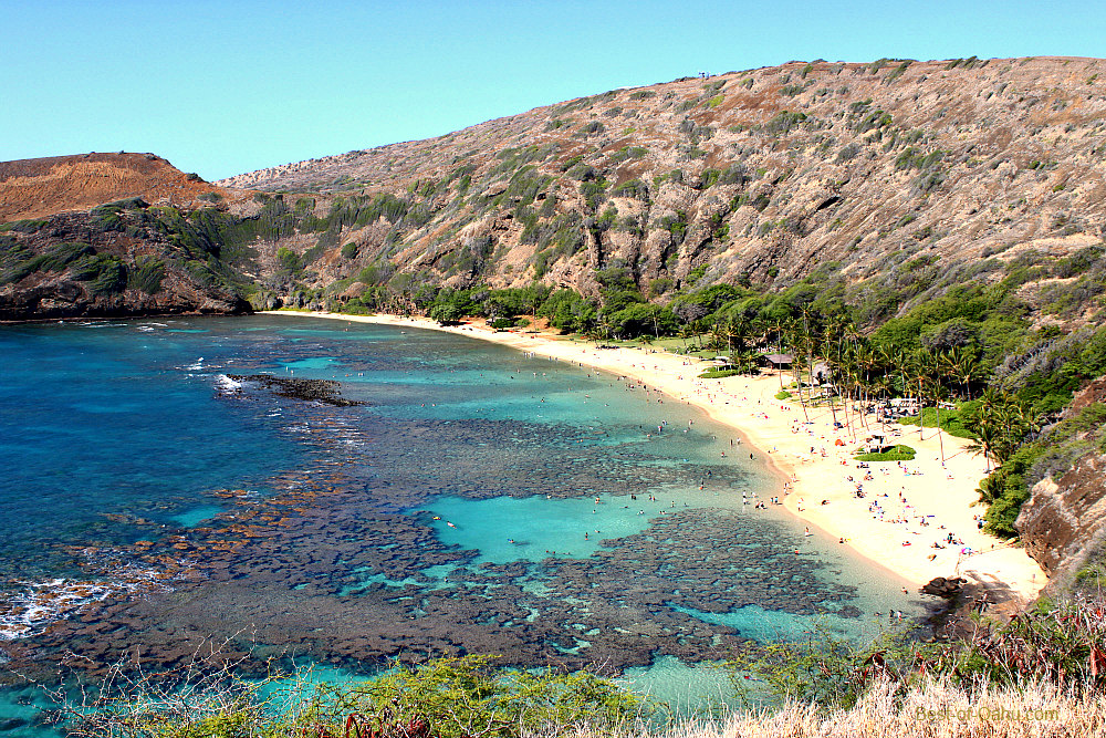 Hanauma bay snorkeling for Bottom fishing oahu