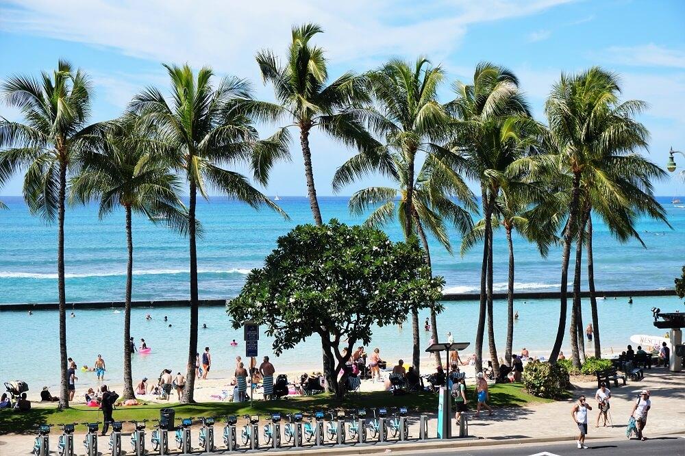 Waikiki Beach 8 Sections