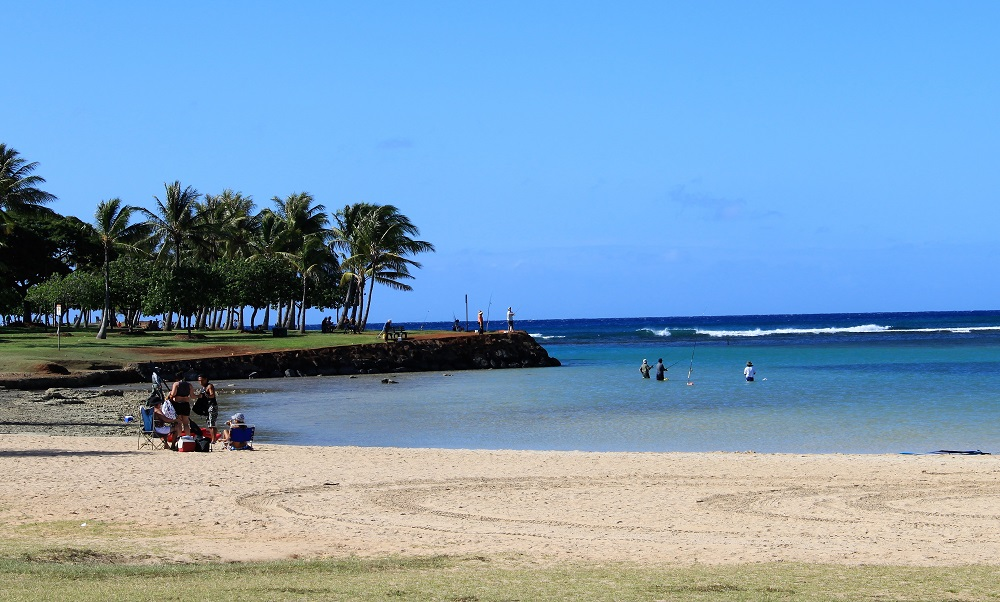 Ala Moana Beach Park Most Popular Local Oahu Beach