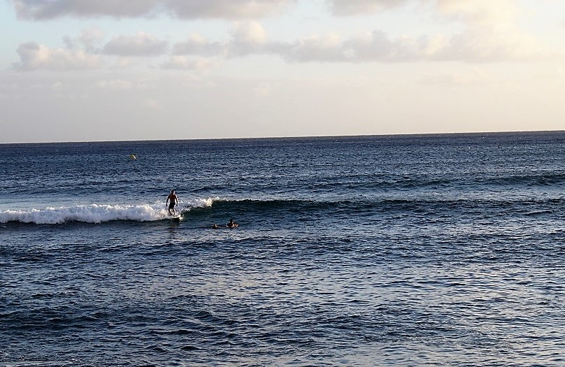 ala moana surf