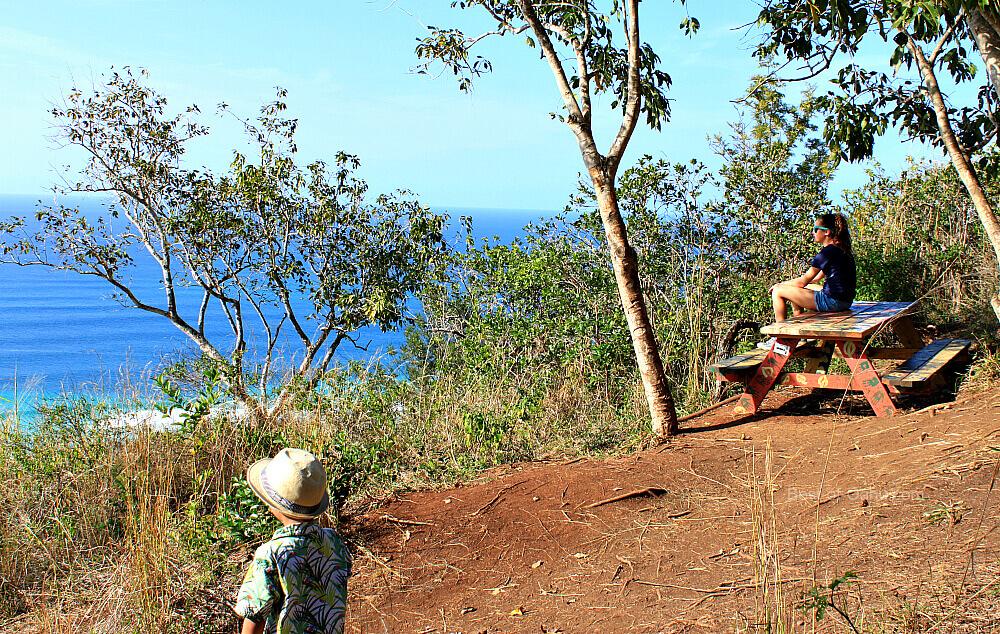 Ehukai Pillbox Trail Bench