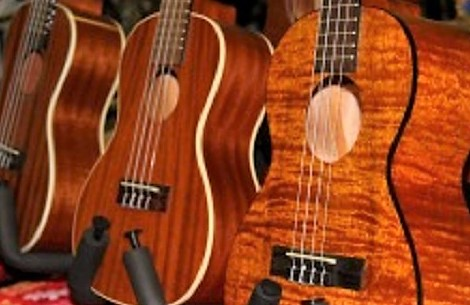 Honolulu Nut and Ukulele Company