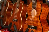 Honolulu Nuts and Ukuleles Company