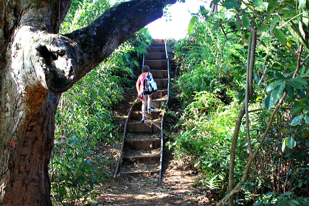 Maunawili Falls Stairs