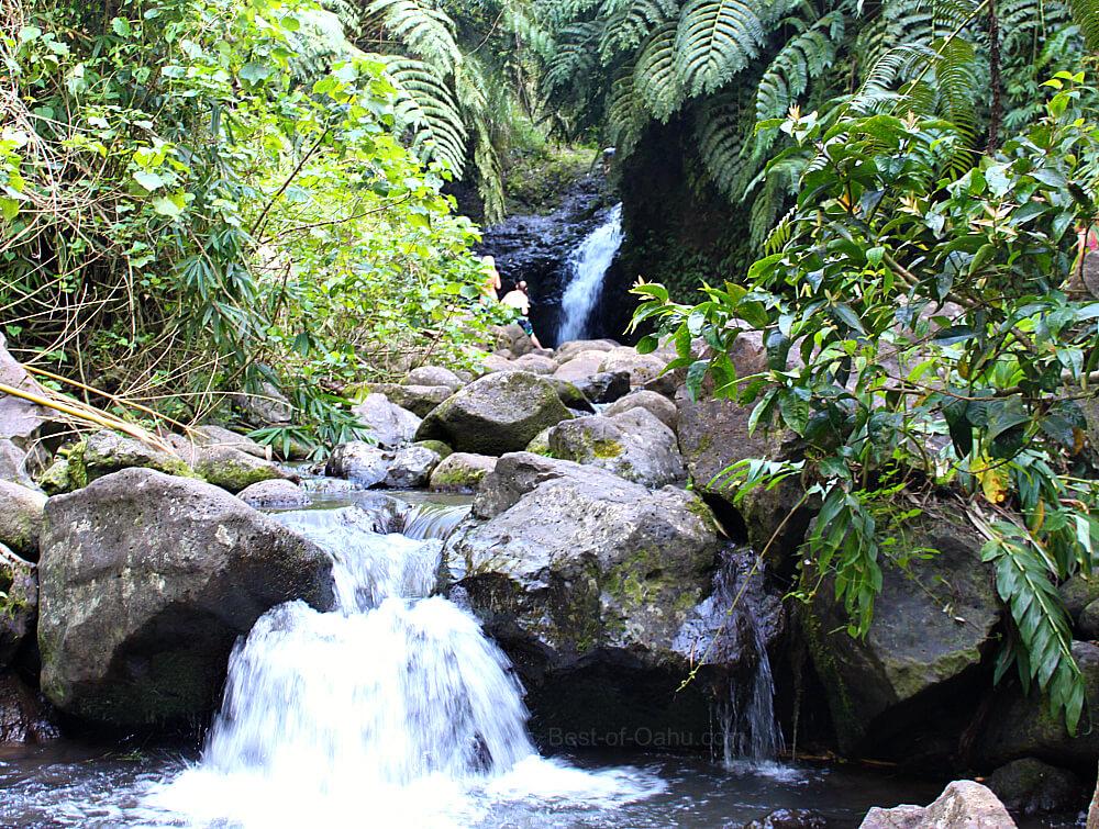 Maunawili Falls Water Path