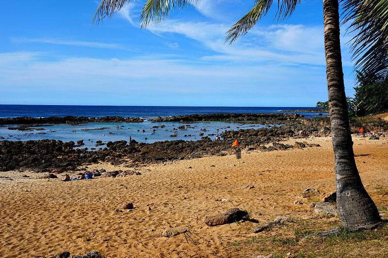 Shark Cove Beach