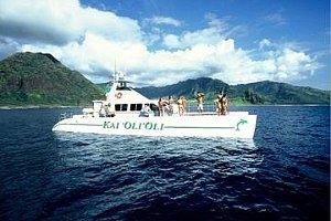 Catamaran Snorkeling Tour;