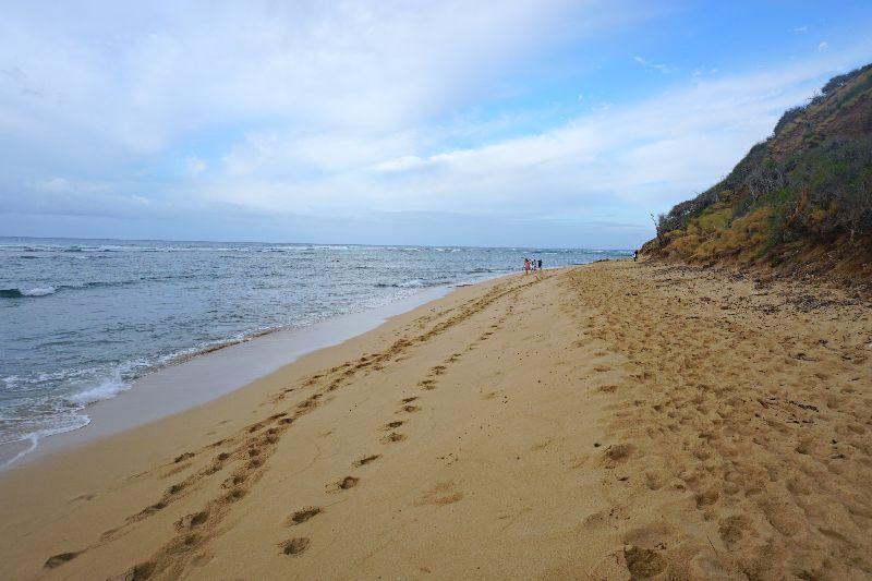 Diamond Head Beach Stroll