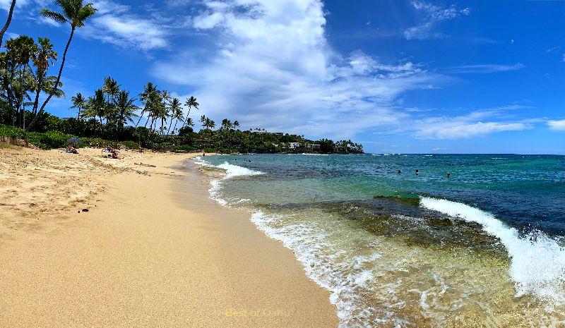 Diamond Head Beach Swimming
