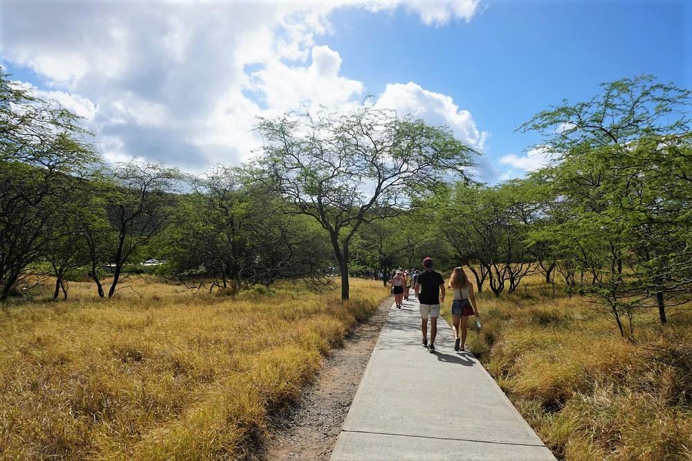 Diamond Head Trail Path
