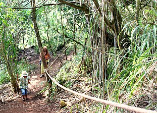 Ehukai Pillbox Climbing Ropes