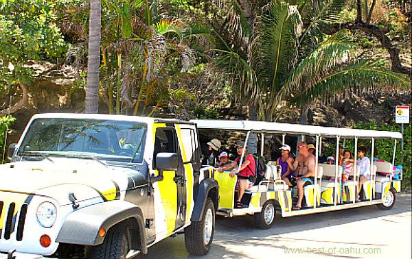 Hanauma Bay Beach Shuttle