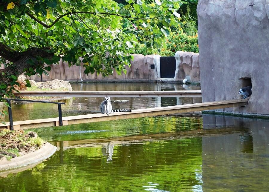 Honolulu Zoo Exhibits