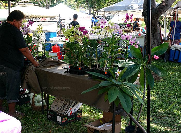 KCC Farmers Market Flowers