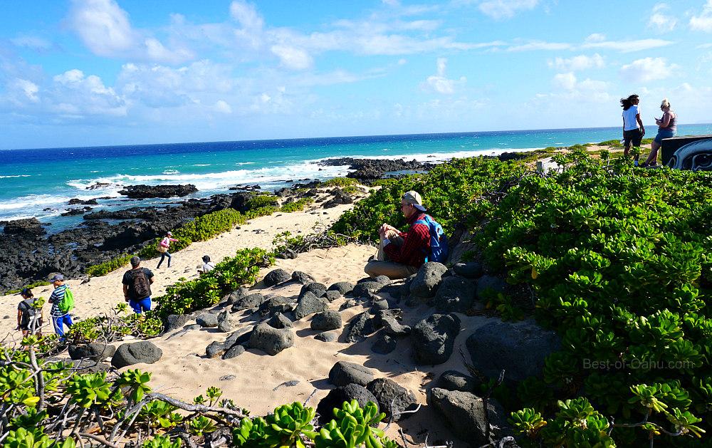 Kaena Point Beach
