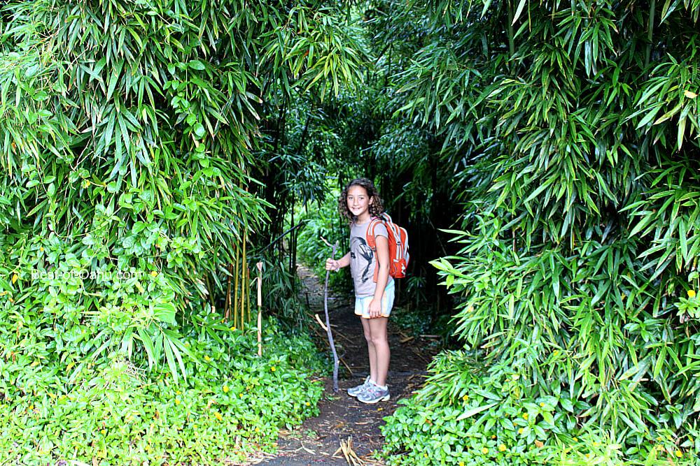 Kaniakapupu Entrance