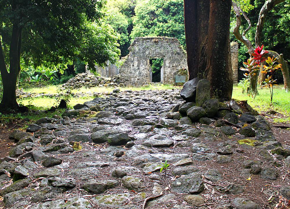 Kaniakapupu Path