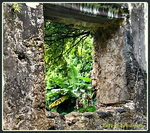 Kaniakapupu Ruin Window