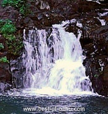 Kapena Falls Oahu