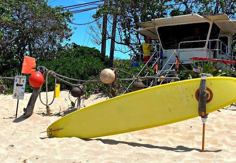 Laniakea Beach Lifeguard