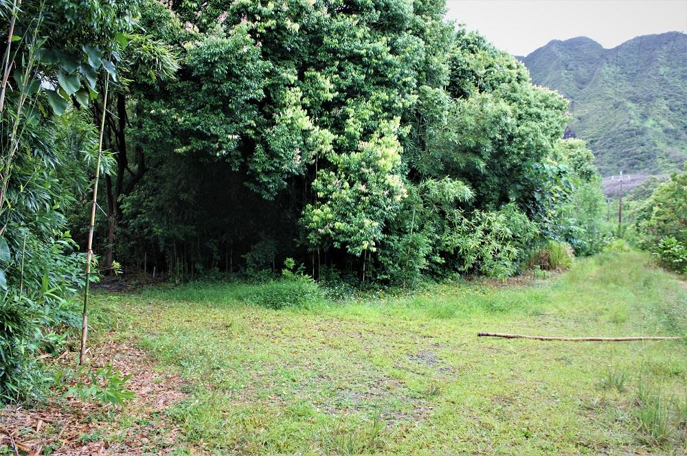 Lulumahu Falls Path