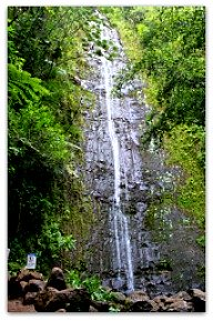 Oahu Hiking Trails - Manoa Falls Trail