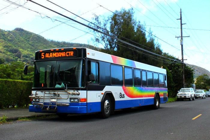 Manoa Falls Bus