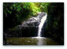 Oahu Hiking Trails - Mauanawili Falls Trail