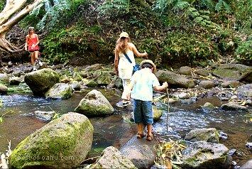 Maunawili Falls Stream
