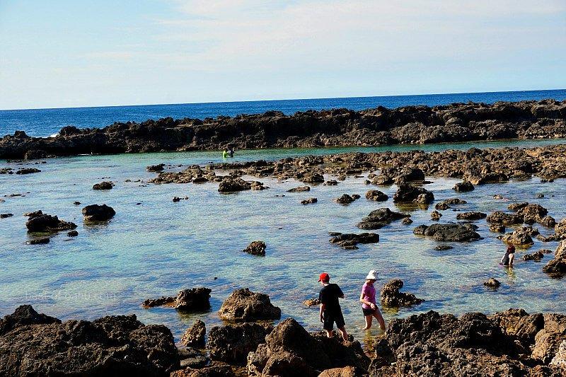 Shark Cove Tide Pools