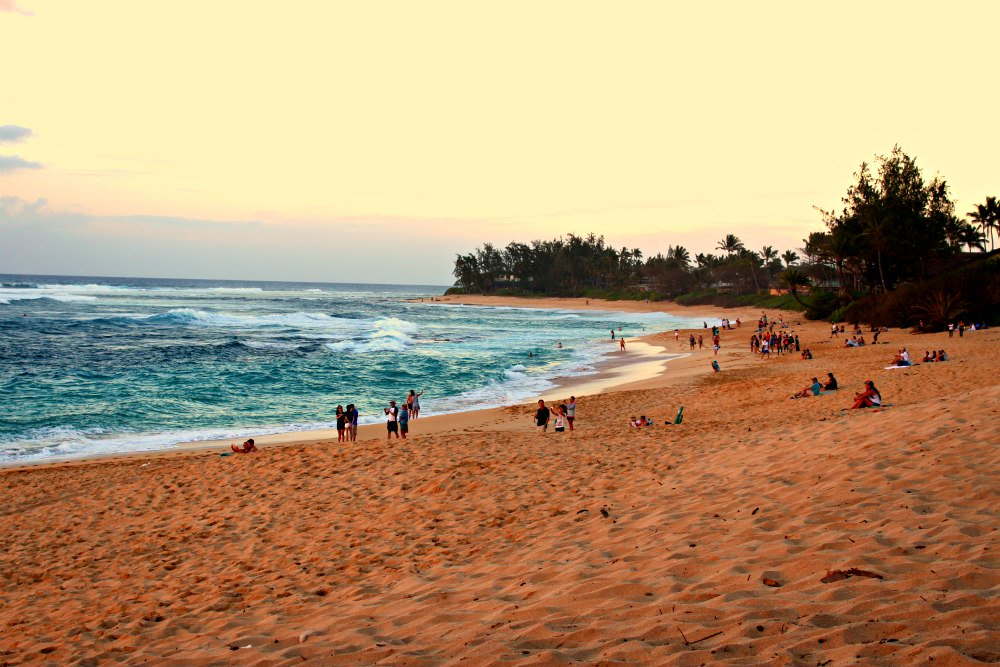 North Shore Sunset Beach Surf Report