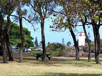 Waimea Bay Park Area