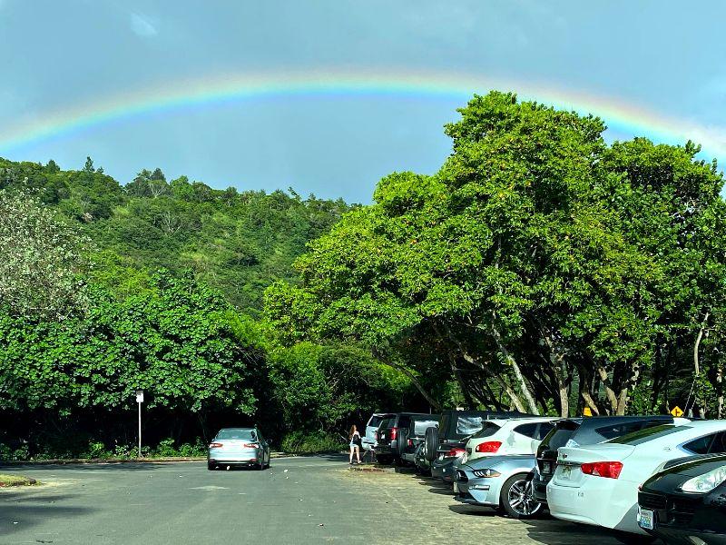 Waimea Bay Parking Lot