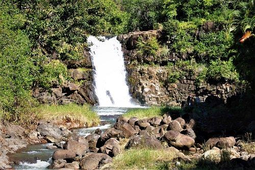 Waimea Falls Park
